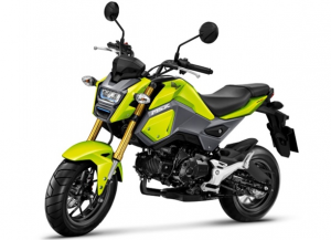 2020 Honda Grom pictures
